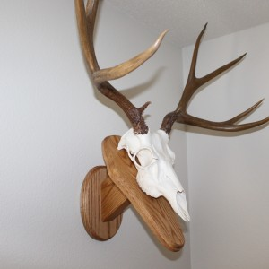 Deer Pedestal Mount